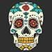 Harrisonburg Skeleton Festival
